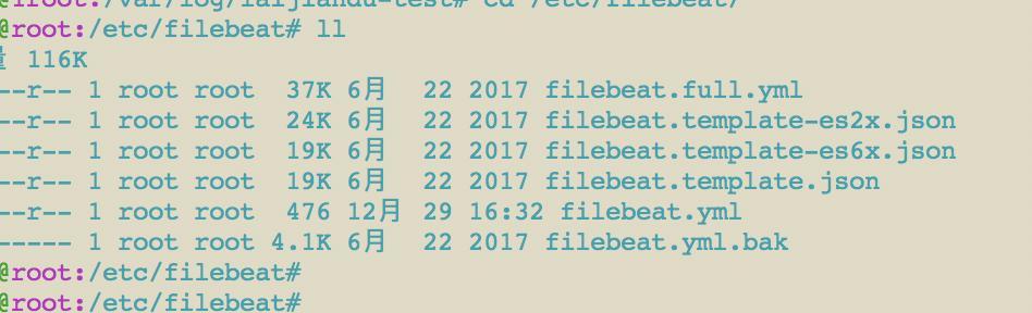 Filebeat data registry location