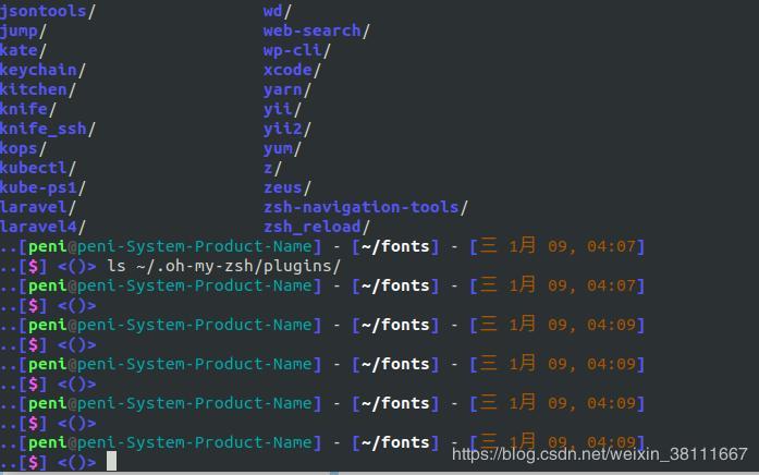 Ubuntu 18 04 installation and configuration Oh My Zsh theme