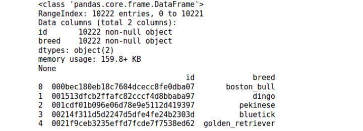 Pytorch]PyTorch Dataloader custom data reading - Programmer