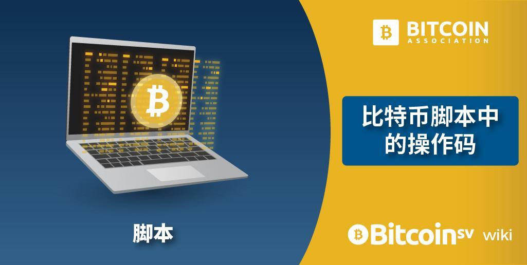 Opcodes bitcoins understanding mma betting odds