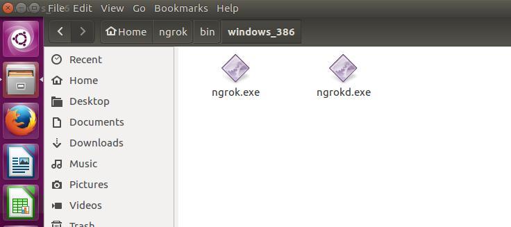 One-minute intranet penetration (ngrok server setup) - Programmer Sought